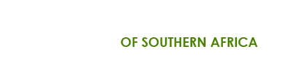 Afghan Hound Association of Southern Africa Logo